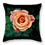 Peachesncream Throw Pillow