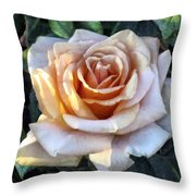 Peachpink Pout Throw Pillow