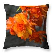 Peachy Begonias Throw Pillow
