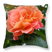 Peachy Elegance Throw Pillow