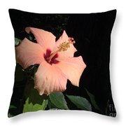 Peachy Hibiscus Throw Pillow