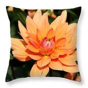 Peachy Petals Throw Pillow