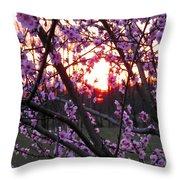 Peachy Sunset 2 Throw Pillow