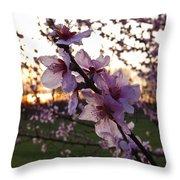 Peachy Sunset 2014 #2 Throw Pillow