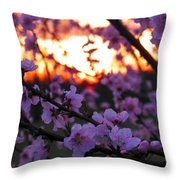 Peachy Sunset 3 Throw Pillow