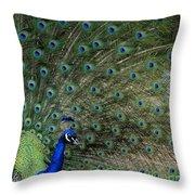 Peacock 8 Throw Pillow