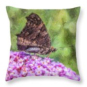Peacock Butterfly Inachis Io On Buddleja Throw Pillow