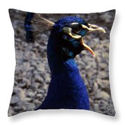 Peacock Caw Throw Pillow