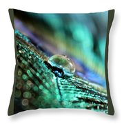 Peacock Charm Throw Pillow
