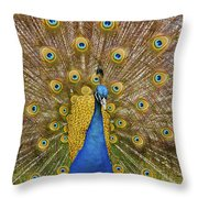 Peacock Courting Throw Pillow