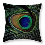 Peacock Eye Throw Pillow