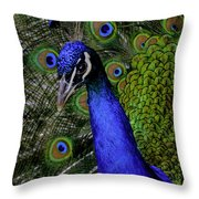 Peacock Head And Tail Throw Pillow