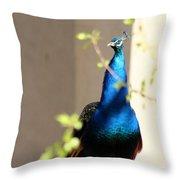 Peacock II Throw Pillow