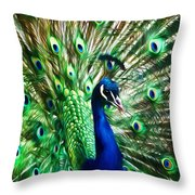 Peacock - Impressions Throw Pillow