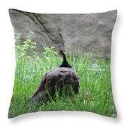 Peacock In The Grass Throw Pillow