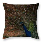 Peacock Show Off Throw Pillow