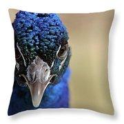 Peacock Up Close Throw Pillow