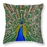 Peafowl Peacock Throw Pillow