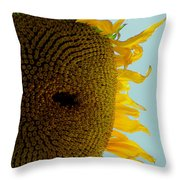 Peak A Boo Sunflower Throw Pillow