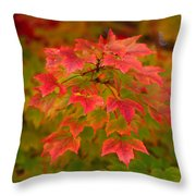 Peaking Desire Throw Pillow