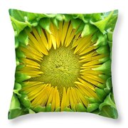Peaking Out #1 Throw Pillow