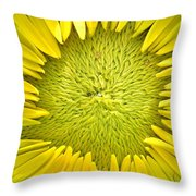 Peaking Out #2 Throw Pillow