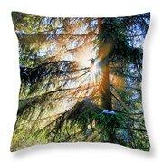 Peeking Through God's Shadow Throw Pillow
