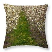 Pear Blossom Lane Throw Pillow