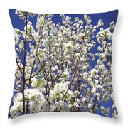 Pear Tree Blossoms In Spring Throw Pillow