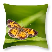 Pearl Crescent Notecard Throw Pillow