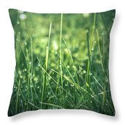 Pearl Pit Throw Pillow