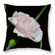Pearl Spotlight Throw Pillow