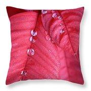 Pearls On Poinsettia Throw Pillow