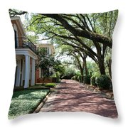 Pebble Hill Plantation Walkway Throw Pillow