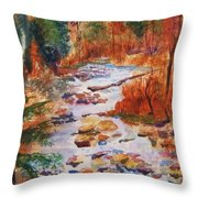 Pebbled Creek Throw Pillow