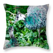 Pecocks Throw Pillow
