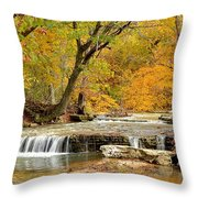 Pedelo Falls Throw Pillow