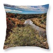 Pedernales River In Autumn Throw Pillow