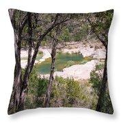 Pedernales River Pool In August Throw Pillow