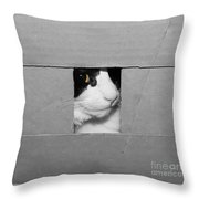 Peek A Boo Kitty Throw Pillow
