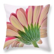Peek A Pink Throw Pillow