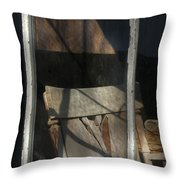 Peek Into The Past Throw Pillow by Sandra Bronstein