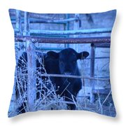 Peekaboo Throw Pillow