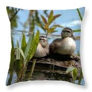 Peeking Ducks Throw Pillow