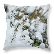 Peeking Through The Snow Throw Pillow