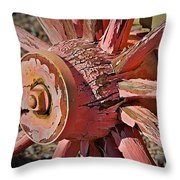 Peeling Pink Wagon Wheel Throw Pillow