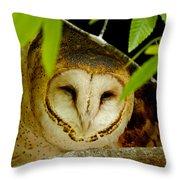 Peering Barn Owl Throw Pillow