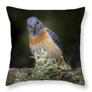 Peering Throw Pillow