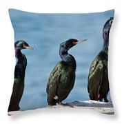 Pelagic Cormorants Throw Pillow