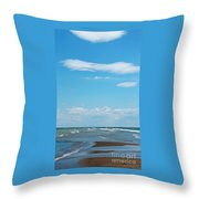 Pelee Throw Pillow